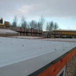 Flat roofs by Lidget Compton